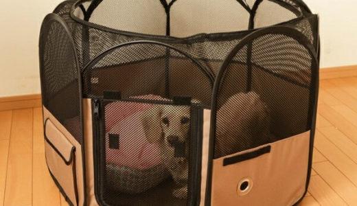 小型犬におすすめの折りたたみサークルPOTSが持ち運びもできて便利